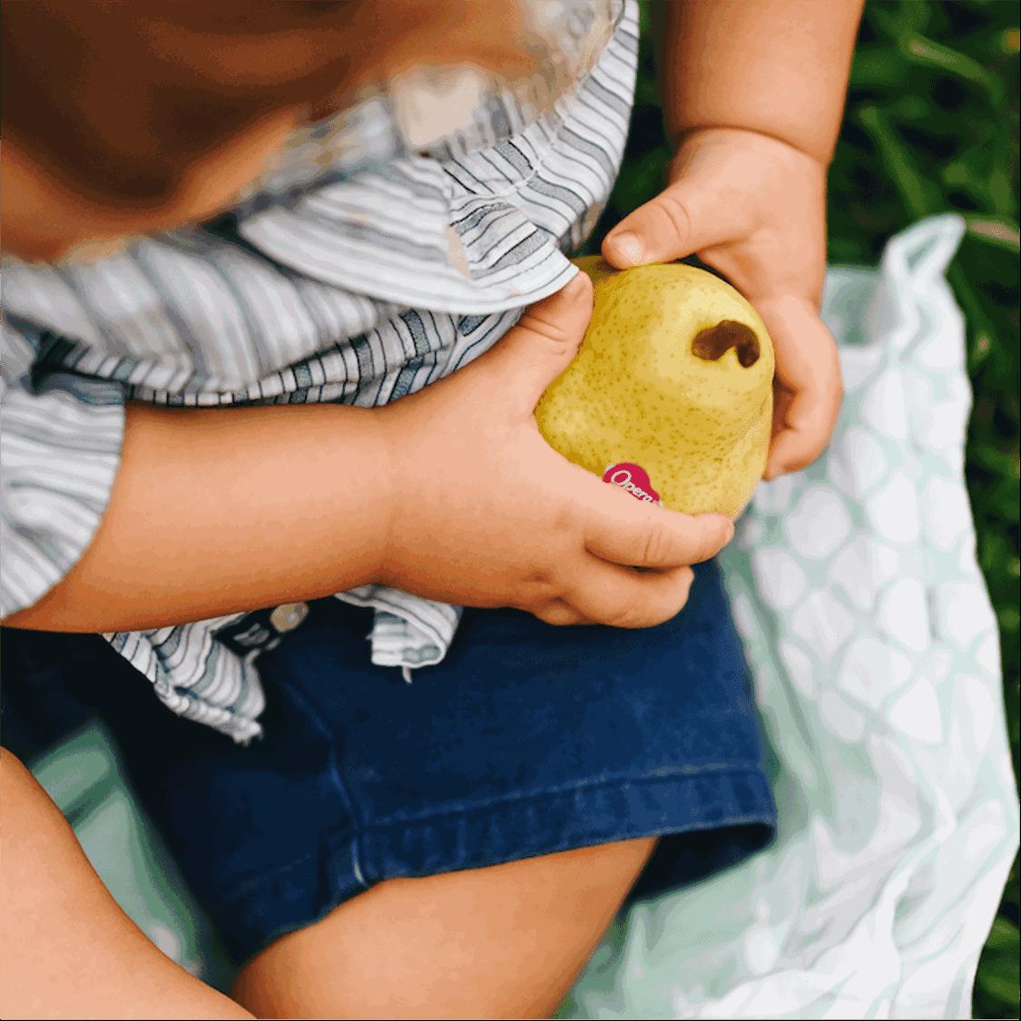 Frutta per neonato: nello svezzamento dai 4 mesi
