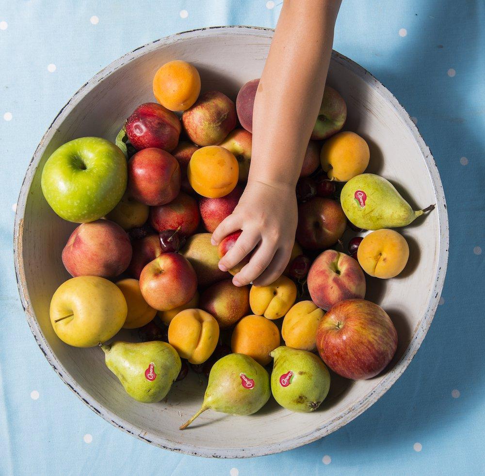 Vassoio contenente frutta mista di stagione